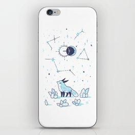 Arctic Nights iPhone Skin