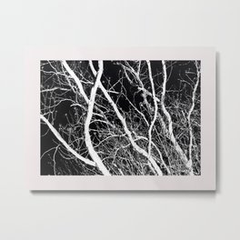 A Reversal Of Light With Trees Metal Print