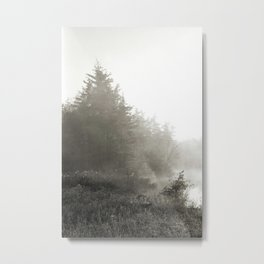 Diamond Bog Metal Print
