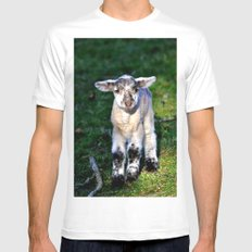 Exmoor Lamb White Mens Fitted Tee MEDIUM