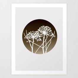 Cow parsnip - Tromso palm Art Print