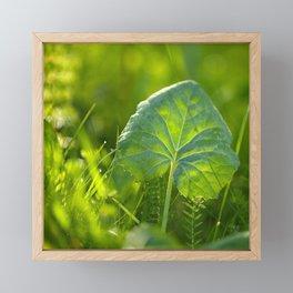 Large Green Leaf On A Sunny Background decor #society6 #homeart Framed Mini Art Print