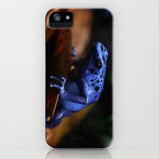 Blue Poison Dart Frog Azureus iPhone (5, 5s) Slim Case
