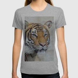Tiger_20151201_by_JAMFoto T-shirt