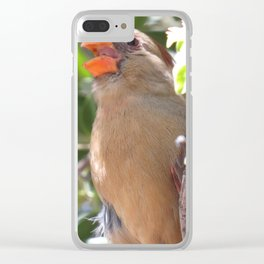Female Cardinal Clear iPhone Case
