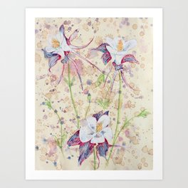 beauTEAful blooms: Columbines Art Print
