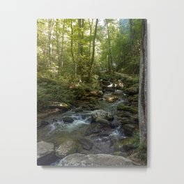Georgia Woods Metal Print