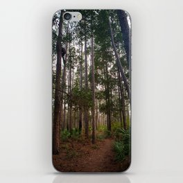 Walking Through the Tall Trees iPhone Skin