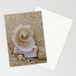 Spiral Shell ~ Bahamas Stationery Cards