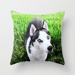 Luca Throw Pillow