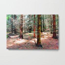 can´t find no mushroom II Metal Print