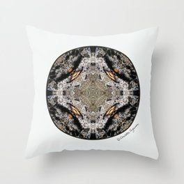 Burned Treasure #5 Throw Pillow