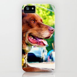Lieing down dog iPhone Case