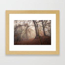 Autumn Fantasy : Mist and Mistery Framed Art Print
