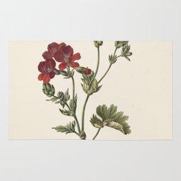 M. de Gijselaar - Red Flower (1830) Rug
