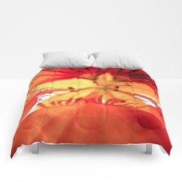 Nasturtium Comforters