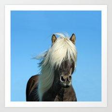 Portrait of a Horse in Scotish Highlands Art Print
