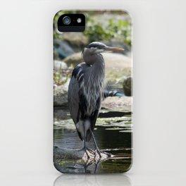 lagoon landing iPhone Case