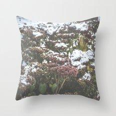 Assiniboine Park Two Throw Pillow