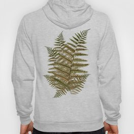 Among the ferns in the forest (military green) Hoody