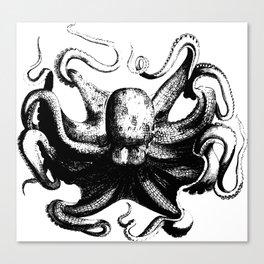 Cool Aqua animal Octopus sketch Canvas Print