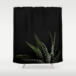 Haworthia Succulent plant cactus Shower Curtain