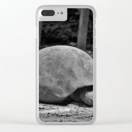 Tortoise Relaxing Clear iPhone Case