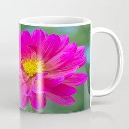 Pink Dahlia Shining Coffee Mug