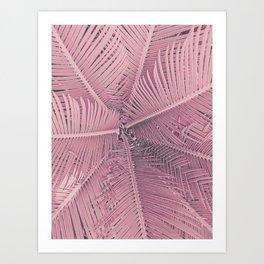 Pink Palm Leaves Art Print