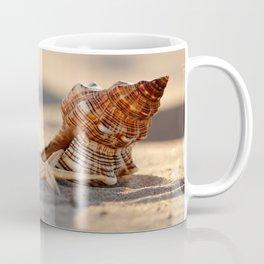 #Light and #Shadow #big #Shell and #starfish at the #beach Coffee Mug