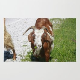 Whimsical Portrait of a Horned Goat Grazing Rug