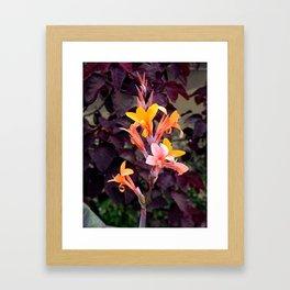 Flower Pic 2 Framed Art Print