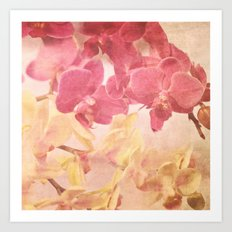 Orchid Romance Art Print