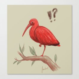 Who are you calling a flamingo? Canvas Print