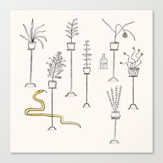 Plants, snake and rum. Canvas Print