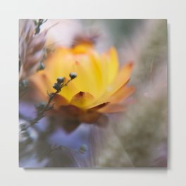 Contrary Metal Print