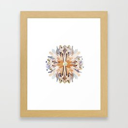 Kaleidoscope II Framed Art Print