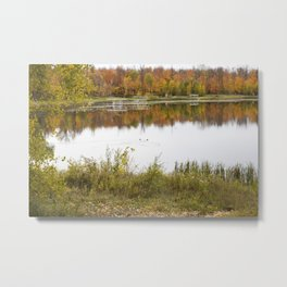 Autumn at the Lake 4 Metal Print