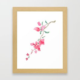 red  pink  bougainvillea watercolor Framed Art Print