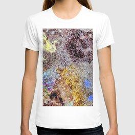Suburban Street Pollock T-shirt