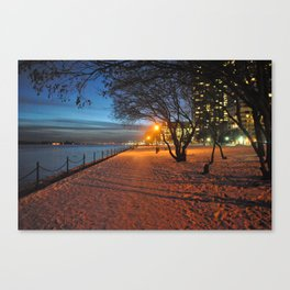 Fall During Winter Canvas Print