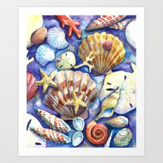 Seashells 3 Art Print