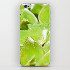 Jello iPhone & iPod Skin