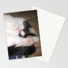 Cute Sleeping black and white cat Stationery Cards
