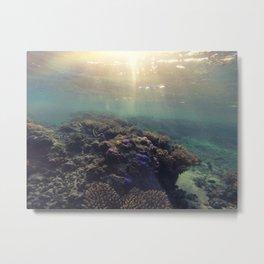 Tropics Metal Print