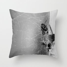 Flies Trapped In a Spider´s Web Throw Pillow