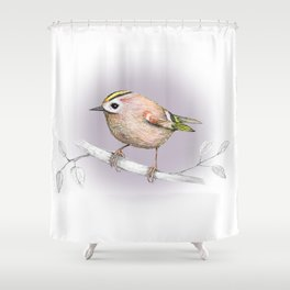 Goldcrest drawing Shower Curtain