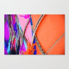 Kity Canvas Print