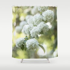 White Hydrangea at beautiful backlight- Flowers Floral Shower Curtain