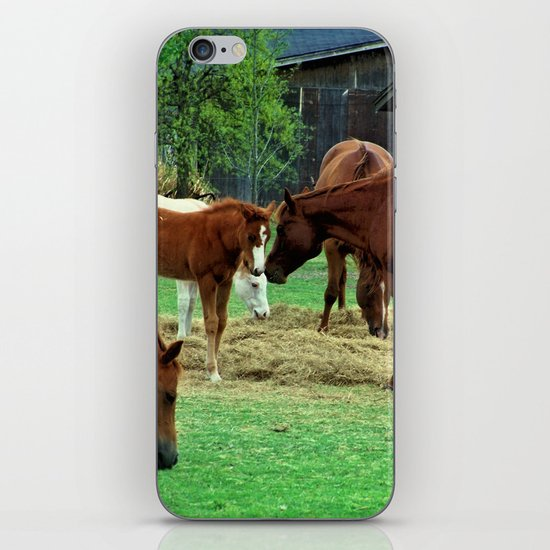A Mothers Love iPhone & iPod Skin